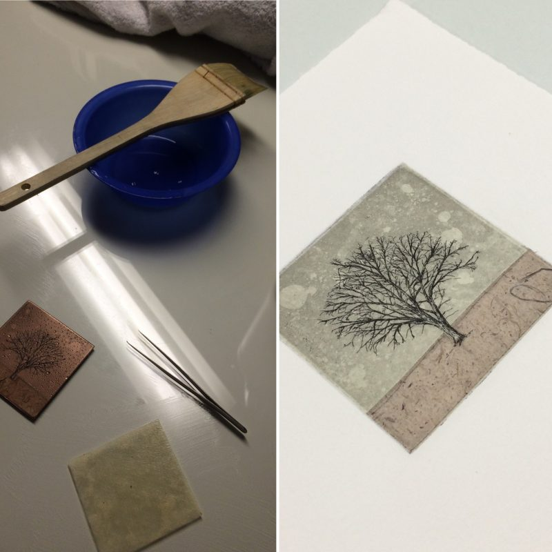 Chine-collé Etching with Japanese paper